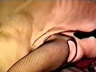 Dog Porn Teen